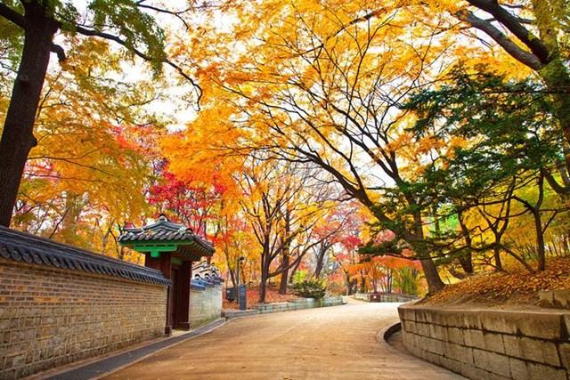 Kim ngạch xuất khẩu hàng hóa sang Hàn Quốc đạt 2,95 tỷ USD trong 2 tháng đầu năm 2020