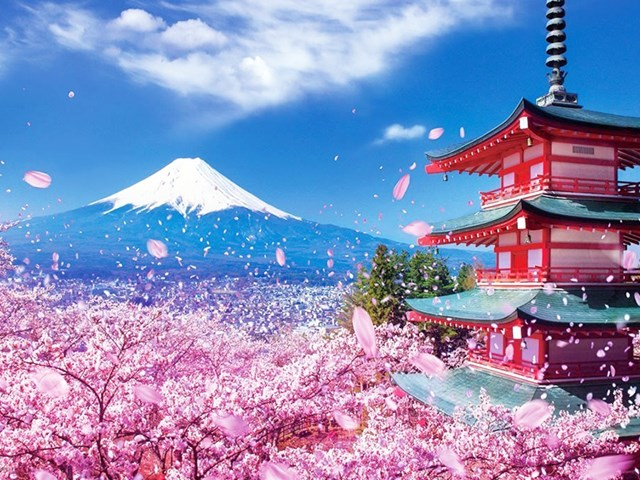 Kim ngạch nhập khẩu hàng hóa từ Nhật Bản 3 tháng đầu năm 2020 đạt 4,87 tỷ USD