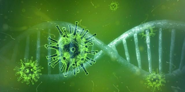 Ban Chỉ đạo Quốc gia tiếp tục thực hiện biện pháp phòng, kiểm soát lây nhiễm nCoV