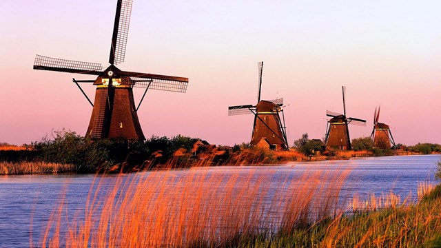 Kim ngạch NK hàng hóa từ Hà Lan giảm trong tháng 11/2020 và cả trong 11 tháng đầu năm