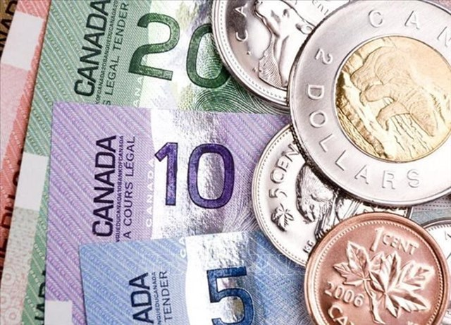 """Giải mã nguyên nhân tiền mặt """"sống sót"""" trong đại dịch COVID-19 tại Canada"""