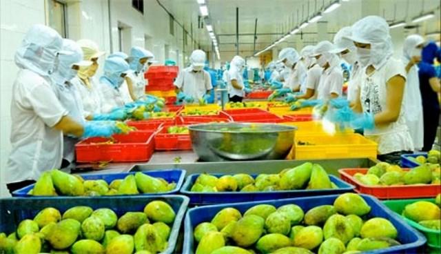 Nông sản Việt nâng chất để mở đường tới Anh