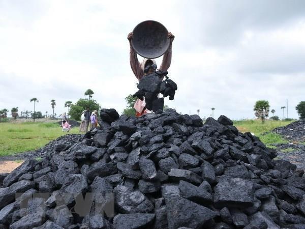 Giá than Indonesia tăng cao nhất trong vòng một thập kỷ qua