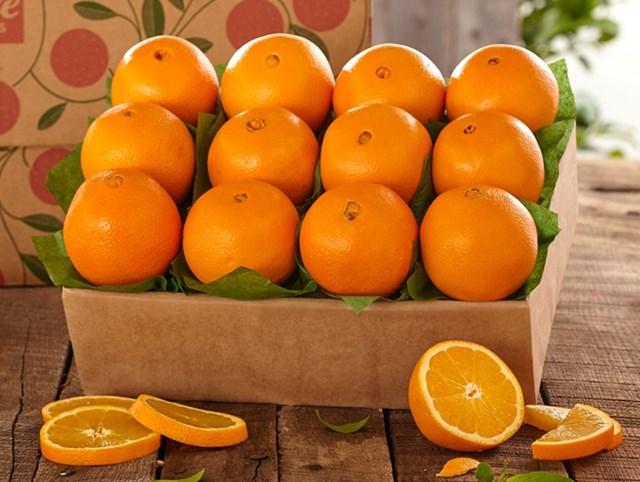 USDA báo cáo về thương mại cam tươi ở các thị trường chủ chốt
