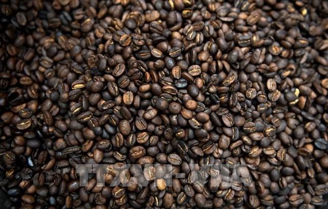 Colombia: Sản lượng cà phê giảm, xuất khẩu tăng