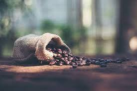 ICO: Giá cà phê tăng lên mức cao nhất trong hơn 6 năm