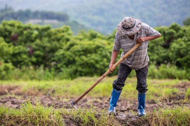 Biến đổi khí hậu là thách thức lớn nhất đối với nông dân khu vực Đông Nam Á
