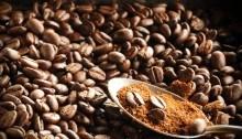 Giá cà phê trong nước ngày 05/7/2017