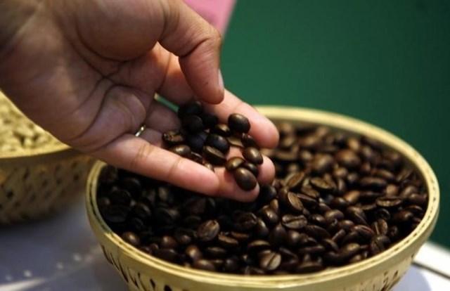Giá cà phê trong nước ngày 14/11/2017
