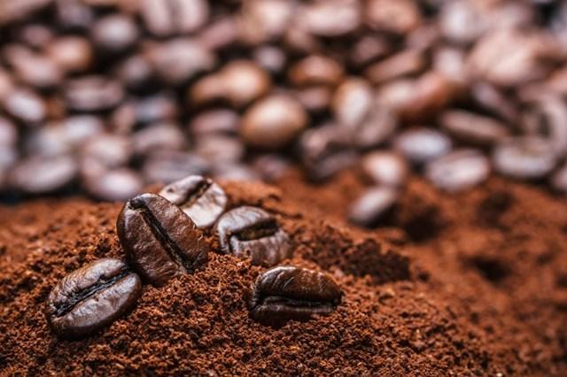 Giá cà phê trong nước ngày 15/9/2017