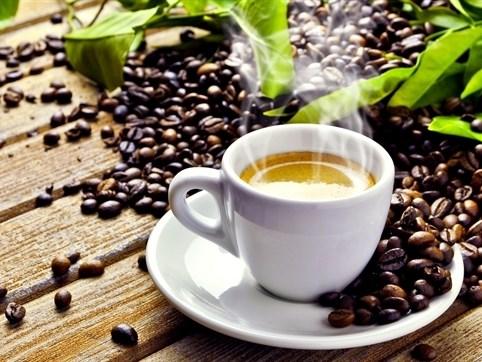 Giá cà phê trong nước ngày 11/10/2017