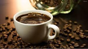 Giá cà phê trong nước ngày 12/10/2017