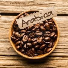 Giá cà phê trong nước ngày 07/11/2017