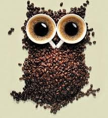 Giá cà phê trong nước ngày 19/12: Giảm nhẹ 100 đồng/kg