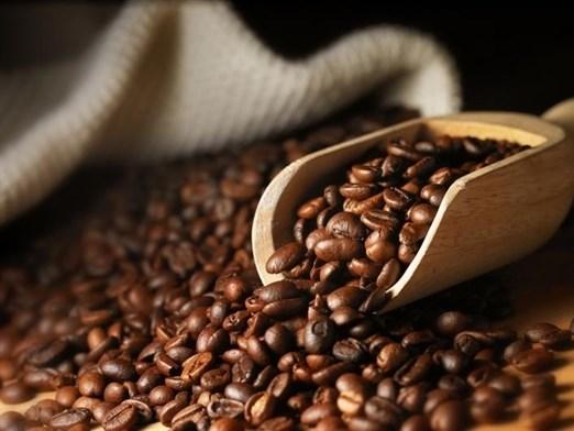 Giá cà phê trong nước ngày 07/12/2017