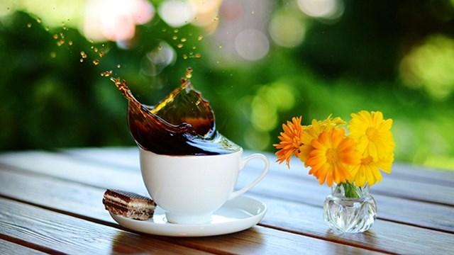 TT cà phê ngày 22/3: Giữ ở mức 36.600 – 37.200 đồng/kg