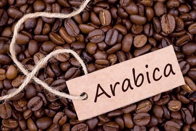 Giá cà phê arabica hồi phục trên mức thấp 12 năm, ca cao tăng