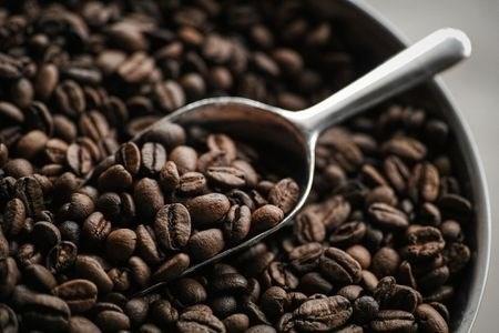 TT cà phê ngày 09/01: Hồi phục trở lại 300 đồng/kg