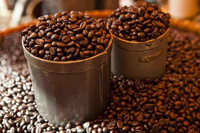 TT cà phê ngày 25/8: Giá giảm nhẹ 100 đồng tại các vùng nguyên liệu