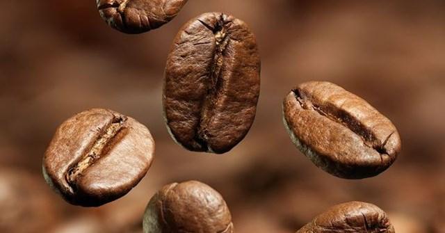 TT cà phê ngày 15/10: Giá hồi phục sau hai phiên sụt giảm