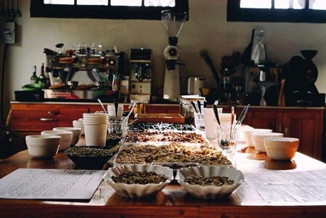TT cà phê ngày 17/7: Lao dốc mạnh, giá tại Lâm Đồng về mức 32.500 đồng/kg