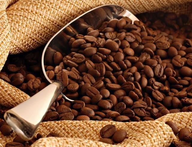 TT cà phê tuần 7 (15/02 – 20/02): Giá hai sàn giao dịch có diễn biến tăng