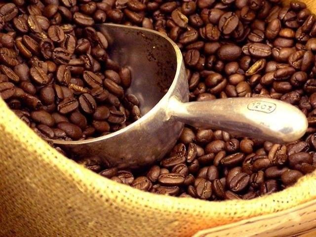 Giá cà phê hôm nay 19/8: Bật tăng 600 đồng, nhiều vùng nguyên liệu đạt trên mốc 38.000 đồng/kg