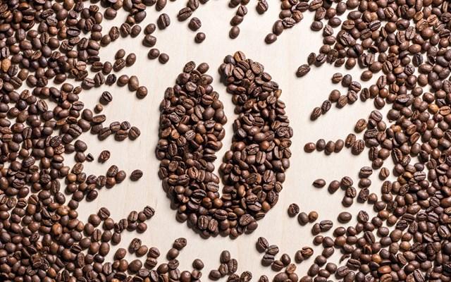 TT cà phê ngày 22/4: Giá nhiều tỉnh vượt qua mốc 33.000 đồng/kg