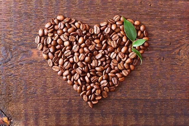 TT cà phê ngày 27/4: Giá tăng khá tại các vùng trồng trọng điểm