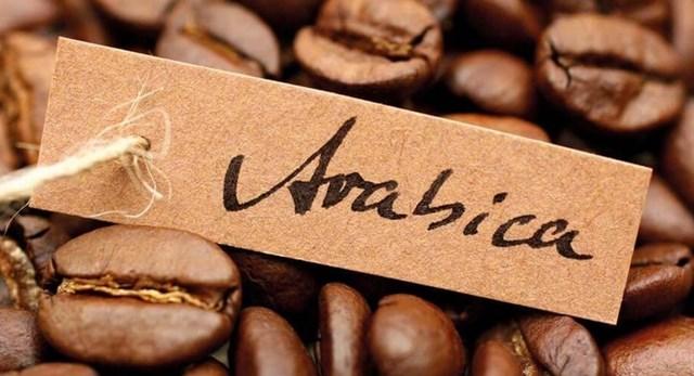 TT cà phê tuần 50: Giá sụt giảm khiến giao dịch chậm lại