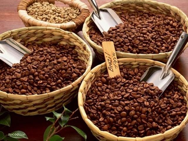 TT cà phê ngày 13/11: Giá tăng thêm 200 đồng/kg tại các vùng nguyên liệu