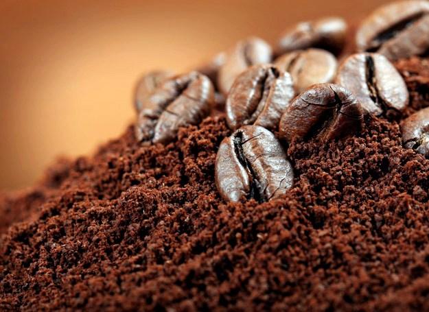 TT cà phê ngày 19/11: Giá tiếp tục sụt giảm thêm 300 đồng/kg