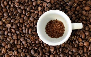 TT cà phê ngày 18/02: Tiếp tục vững giá