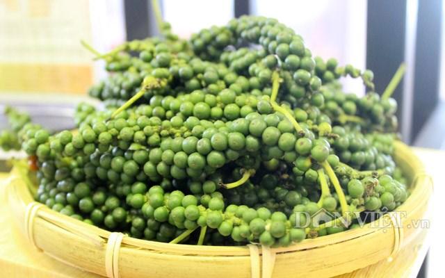 TT hạt tiêu tuần 47: Giá tăng vọt 500 – 1.000 đồng/kg chạm mức 42.000 đồng/kg