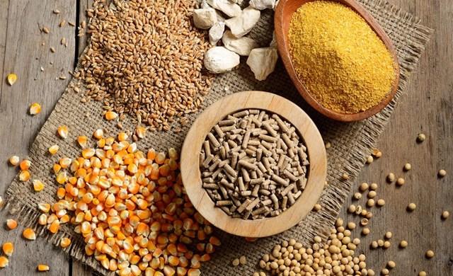 Giá nông sản và kim loại thế giới ngày 09/7/2020