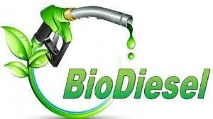 Indonesia cân nhắc các lựa chọn trợ cấp hỗ trợ chương trình diesel sinh học