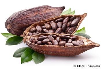Xay nghiền cacao của châu Á tăng do châu Phi mất mùa