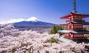 Doanh số sản phẩm dầu mỏ của Nhật Bản tăng lần đầu tiên trong 8 tháng