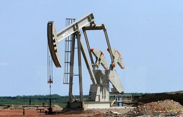 Giá dầu Brent đã giảm xuống mức thấp nhất kể từ năm 2008
