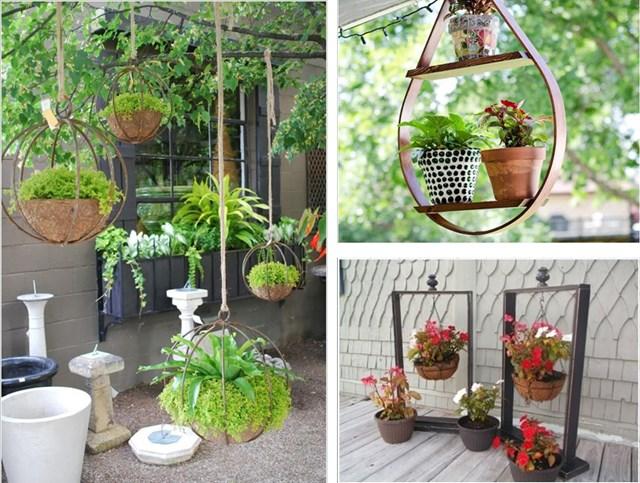 Những ý tưởng trang trí nội thất bằng vườn treo trong nhà