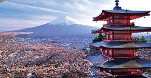 Tổng quan xuất khẩu sang Nhật Bản quí I/2016 và những điều cần biết