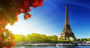 Xuất khẩu sang thị trường Pháp, nhóm hàng hạt tiêu giảm mạnh