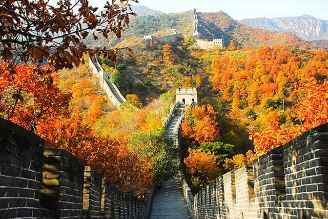 Xuất khẩu sang thị trường Trung Quốc kim ngạch suy giảm