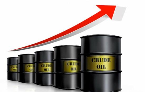TT năng lượng tuần qua: Giá xăng, khí gas không đổi, dầu thế giới tăng hơn 4%
