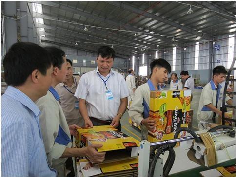 Mô hình SX bao bì carton cao cấp: Động lực phát triển công nghiệp hỗ trợ