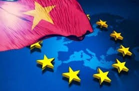 Cơ hội từ EVFTA dưới góc nhìn của doanh nghiệp châu Âu