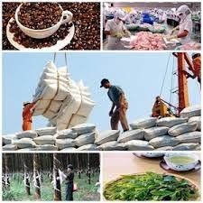 Kim ngạch xuất nhập khẩu giảm gần 13%