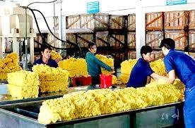 Việt Nam xuất siêu hơn 820 triệu USD cao su 9 tháng đầu năm