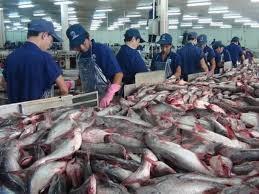 TT thủy sản tuần đầu tháng 3: Giá cá tra nguyên liệu tiếp tục đứng ở mức cao