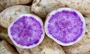 Khoai lang trắng ruột tím xuất xứ từ Australia giá gấp hơn 10 lần so với khoai Việt